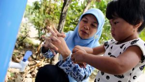Health care goals in Indonesia can be reached only if challenges addressed – UN expert